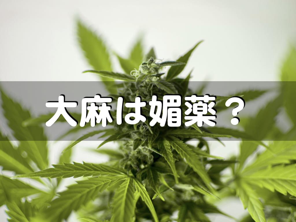 大麻は媚薬なのか?セックスで人気の大麻5選とともに検証します